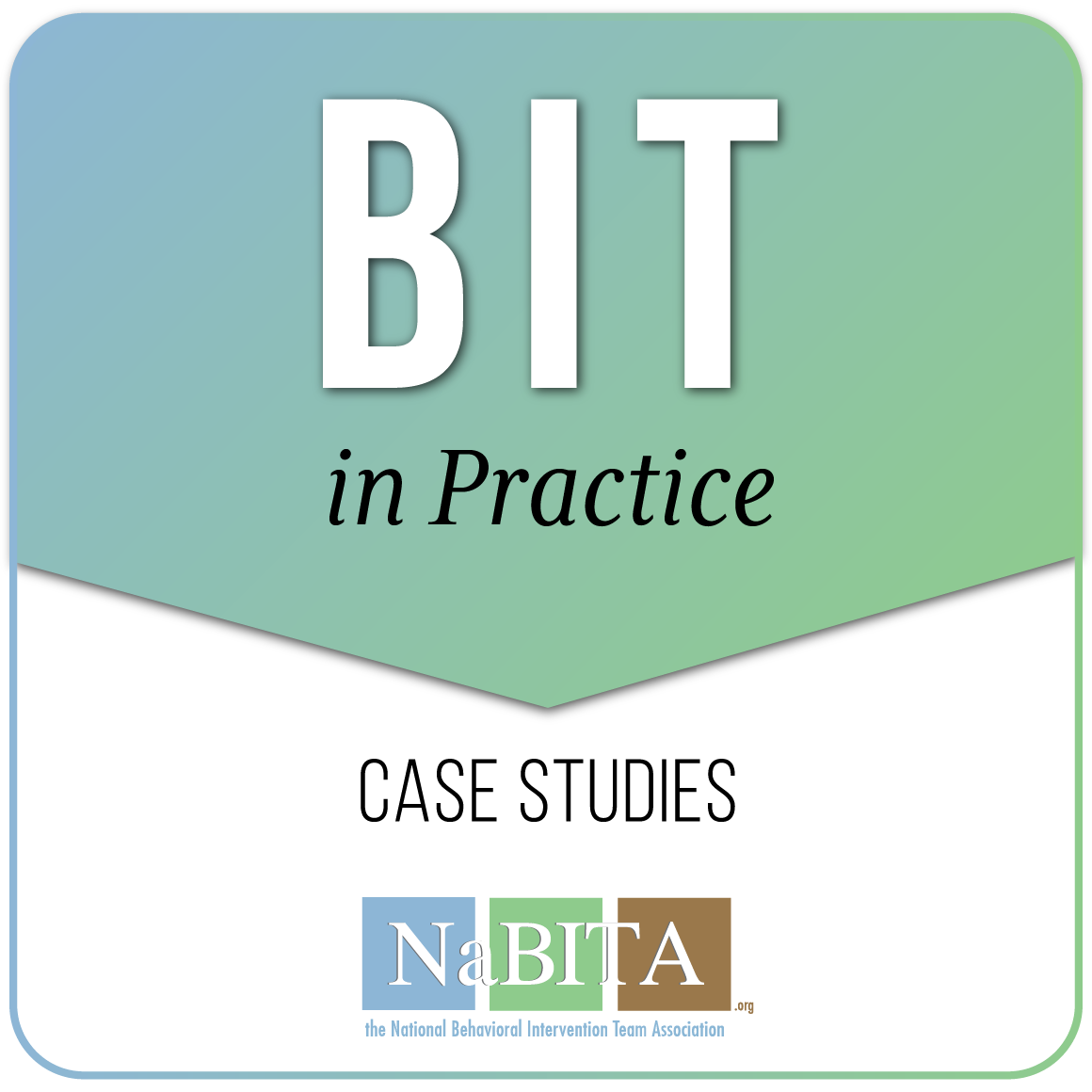 BIT in Practice - Case Studies